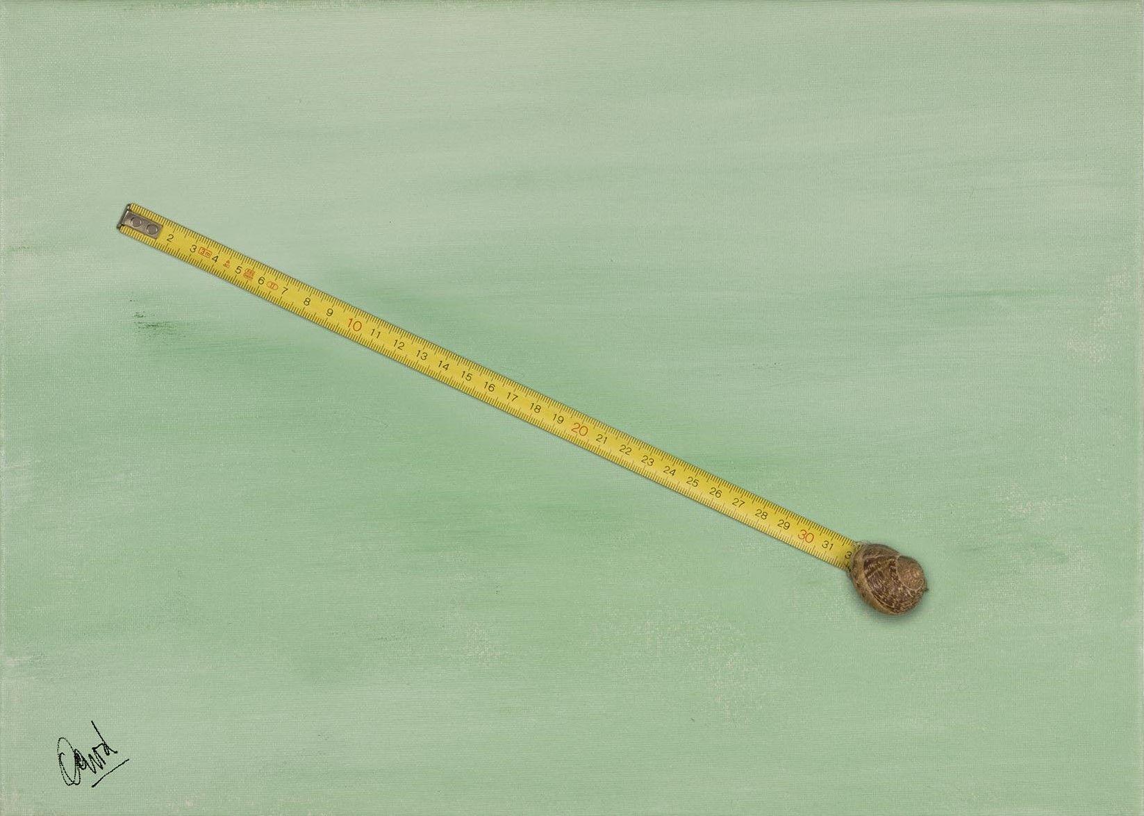 Si un caracol recorre... Poema Visual de David Pérez Pol