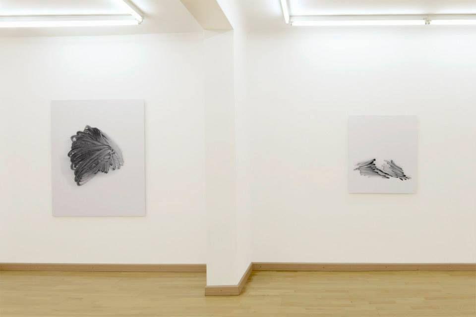 Nina Brauhauser, poeta visual