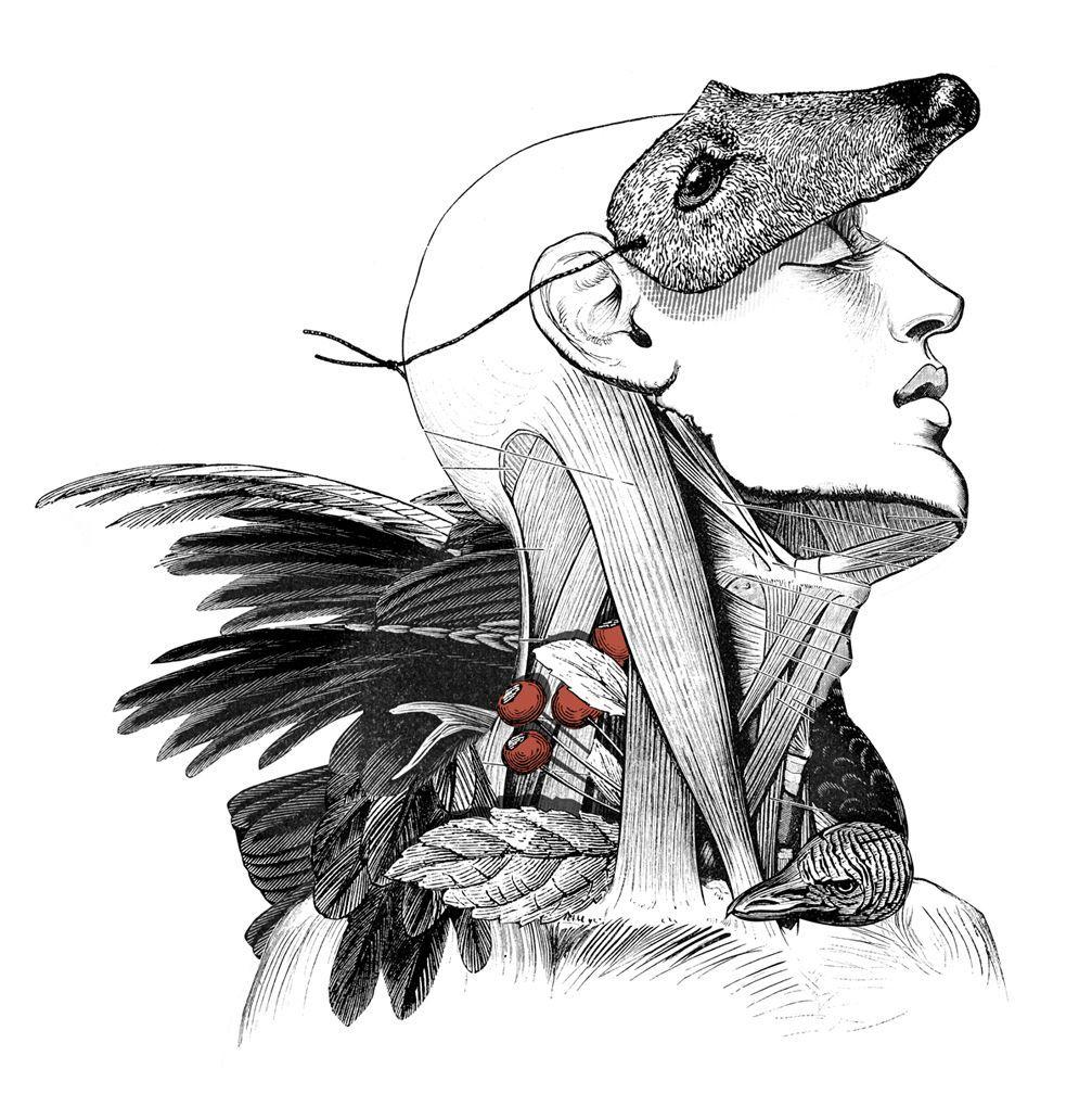 Alejandra Acosta, poeta visual