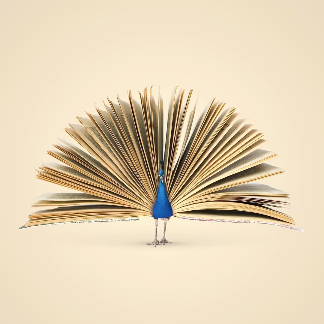 Les Creatonautes, poeta visual