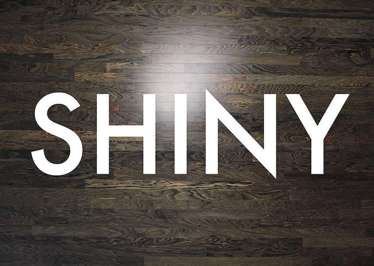 Shiny dirigida por Daniel Cloud Campos, 2017