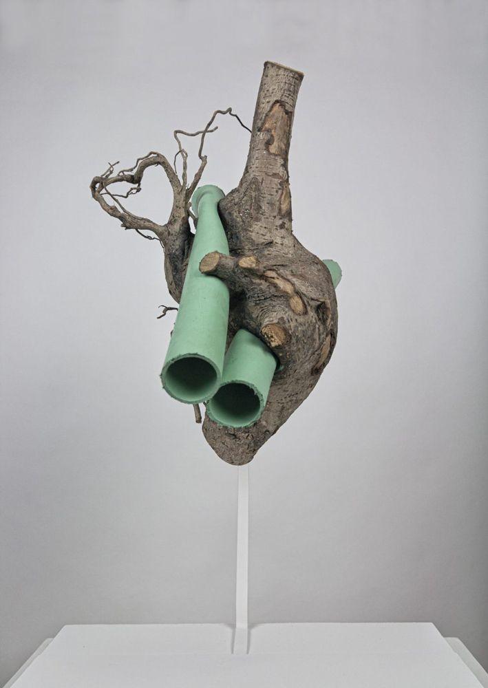 Federico Clapis, poesía visual