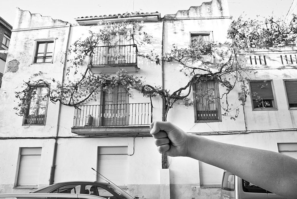 Alfonso Martínez Pla, poesía visual