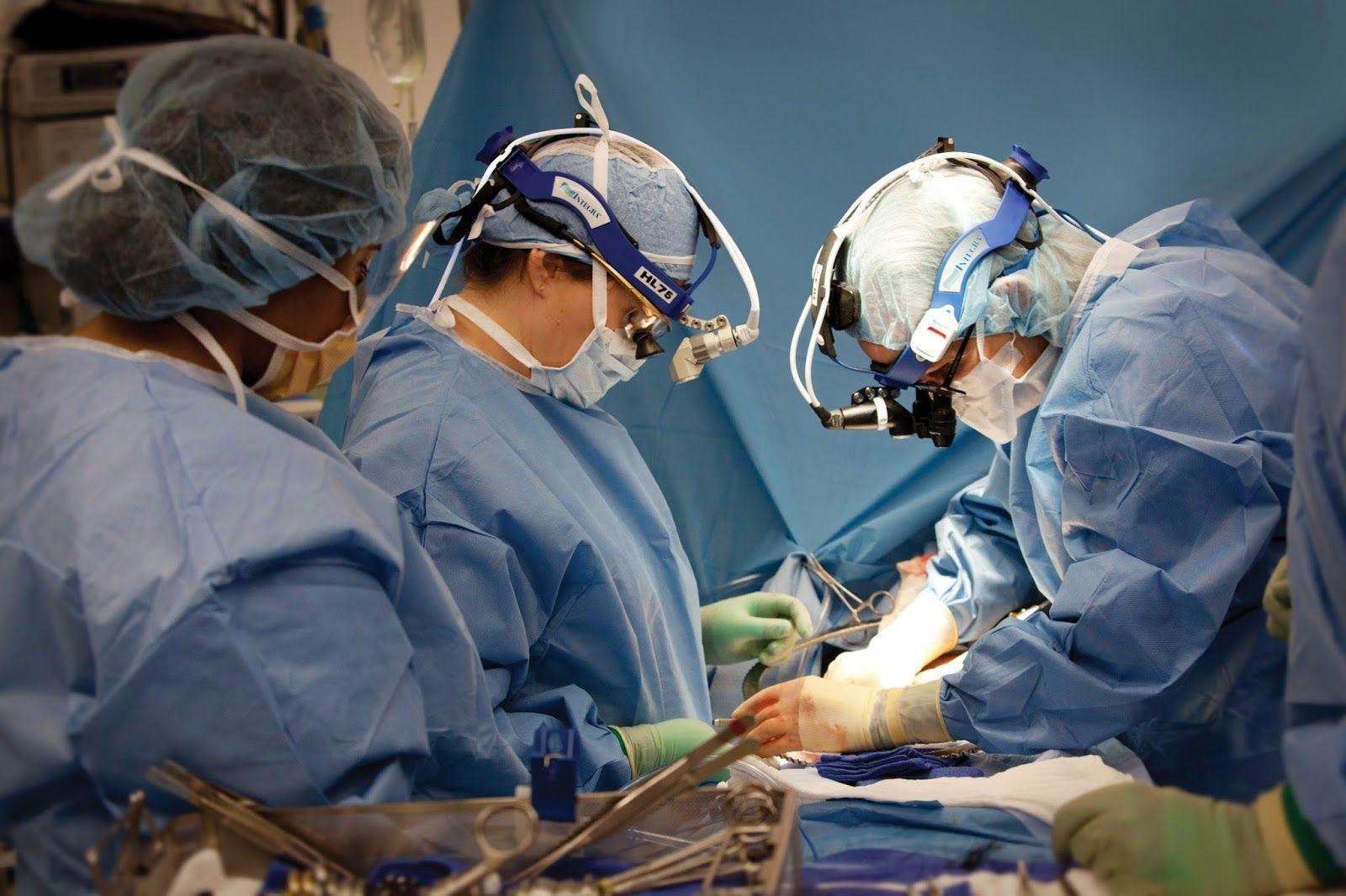 Médicos y cirujanos