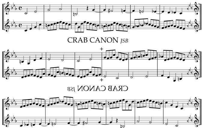 Ver video Crab Canon de Jos Leys