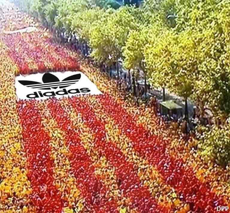 Diada Adidas