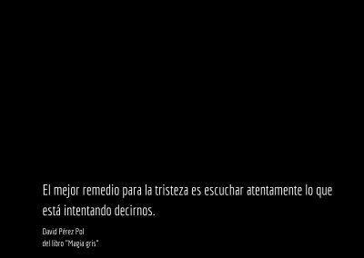 Aforismo nº 57 del libro Magia gris de David Pérez Pol
