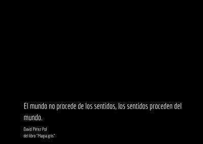 Aforismo nº 60 del libro Magia gris de David Pérez Pol