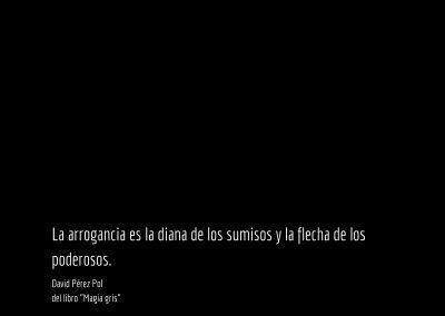 Aforismo nº 74 de el libro Magia gris de David Pérez Pol