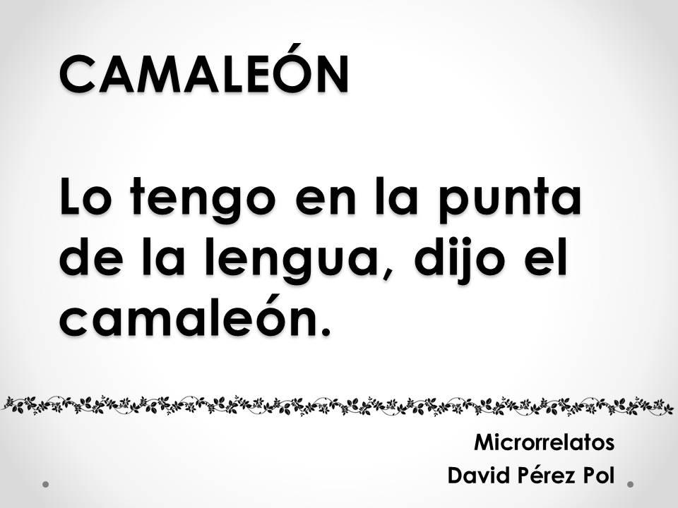 Camaleón Microrrelato nº 5 de David Pérez Pol