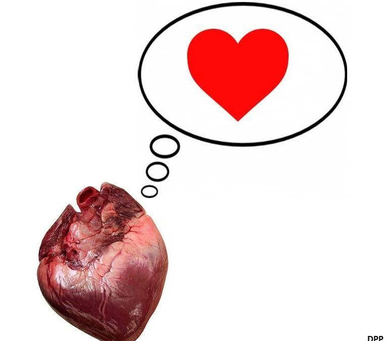 Corazón, corazón