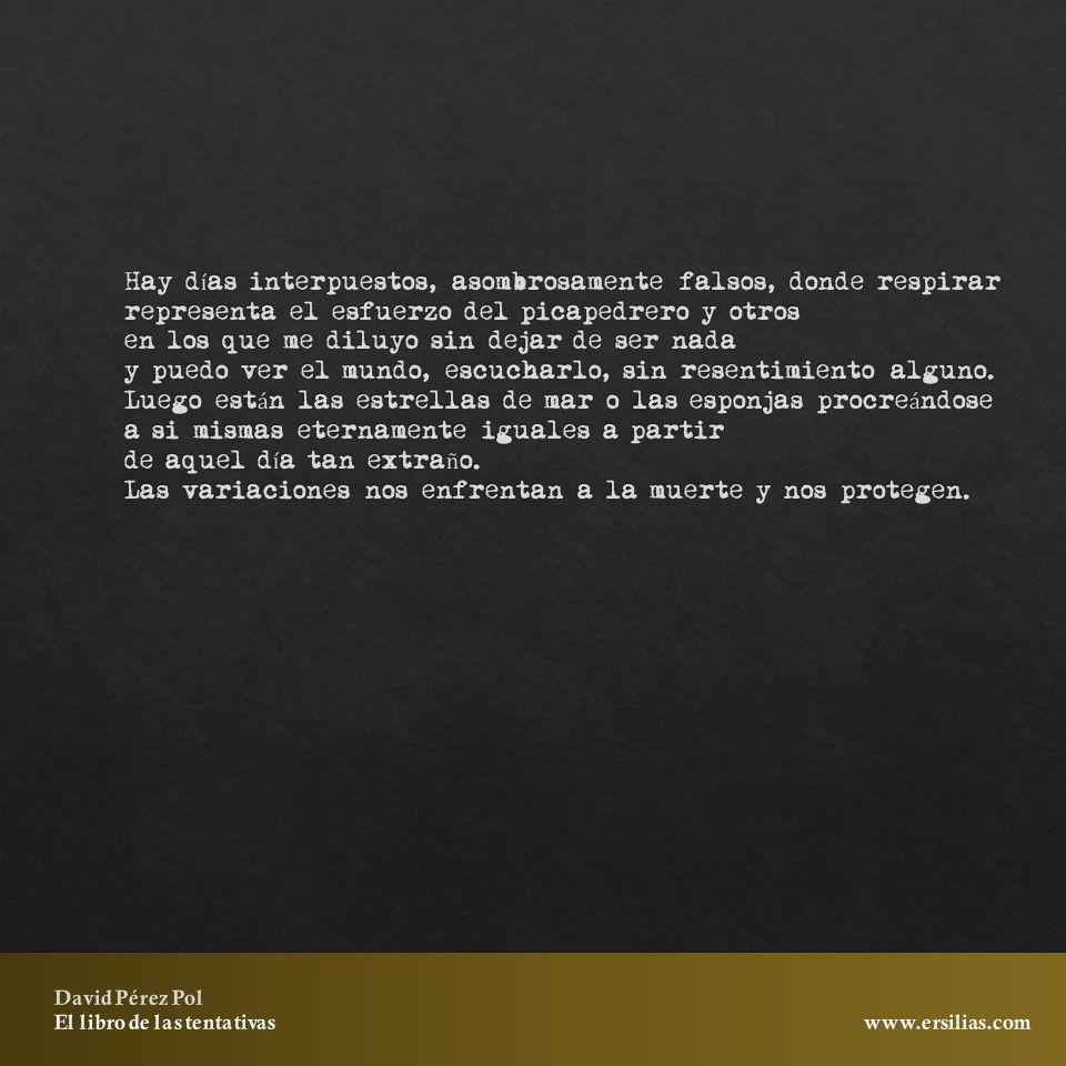 Hay días interpuestos Poema nº 23 de El libro de las tentativas de David Pérez Pol