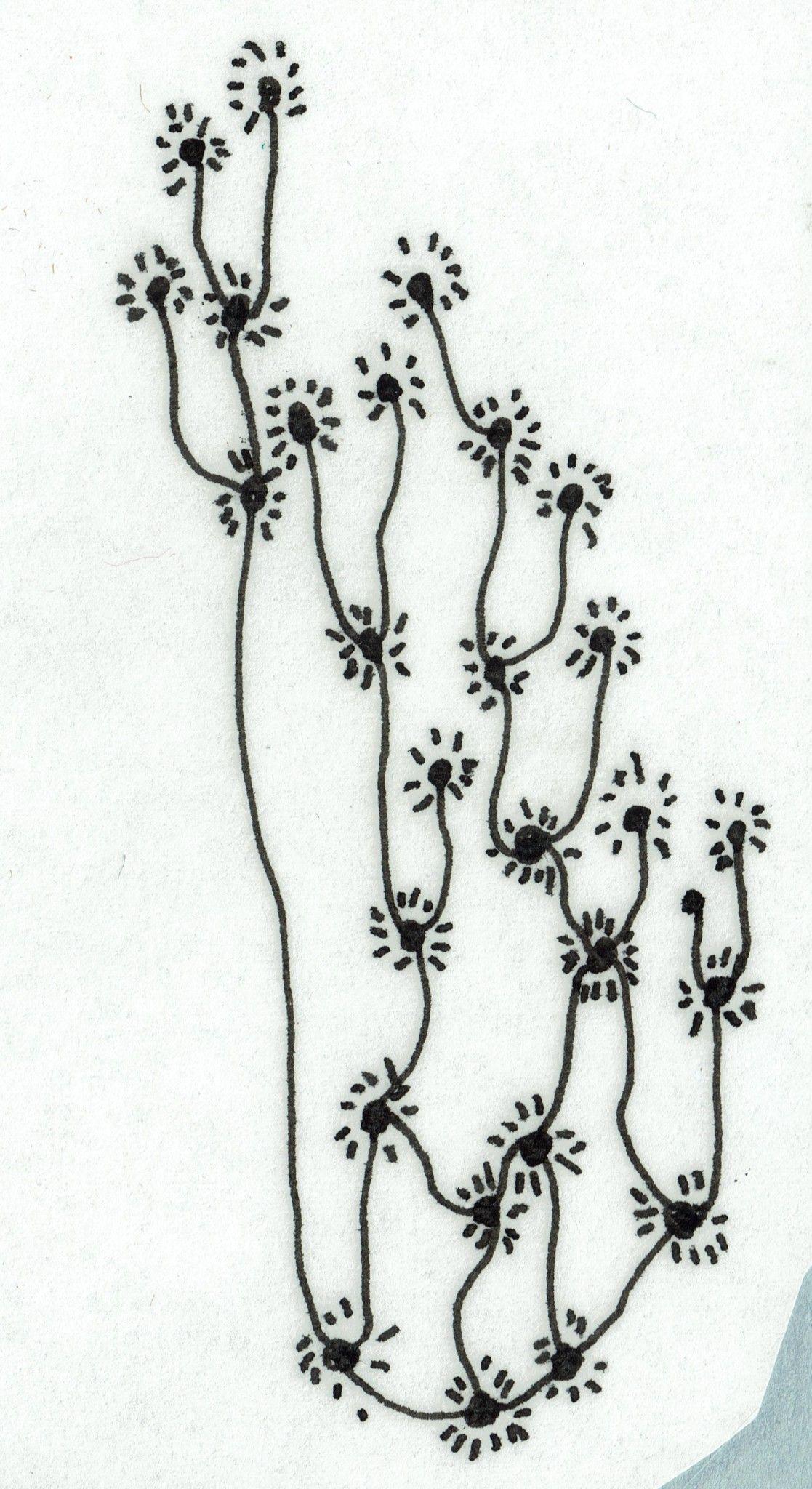 Flores luminiscentes