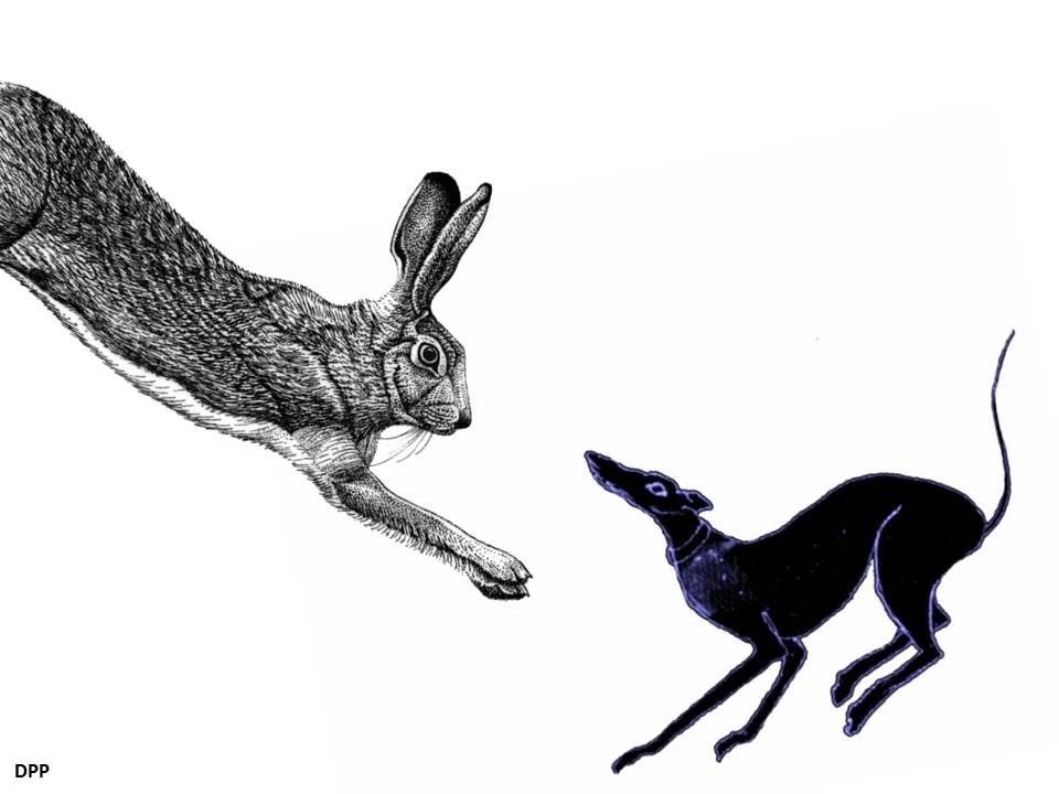 La liebre y el galgo