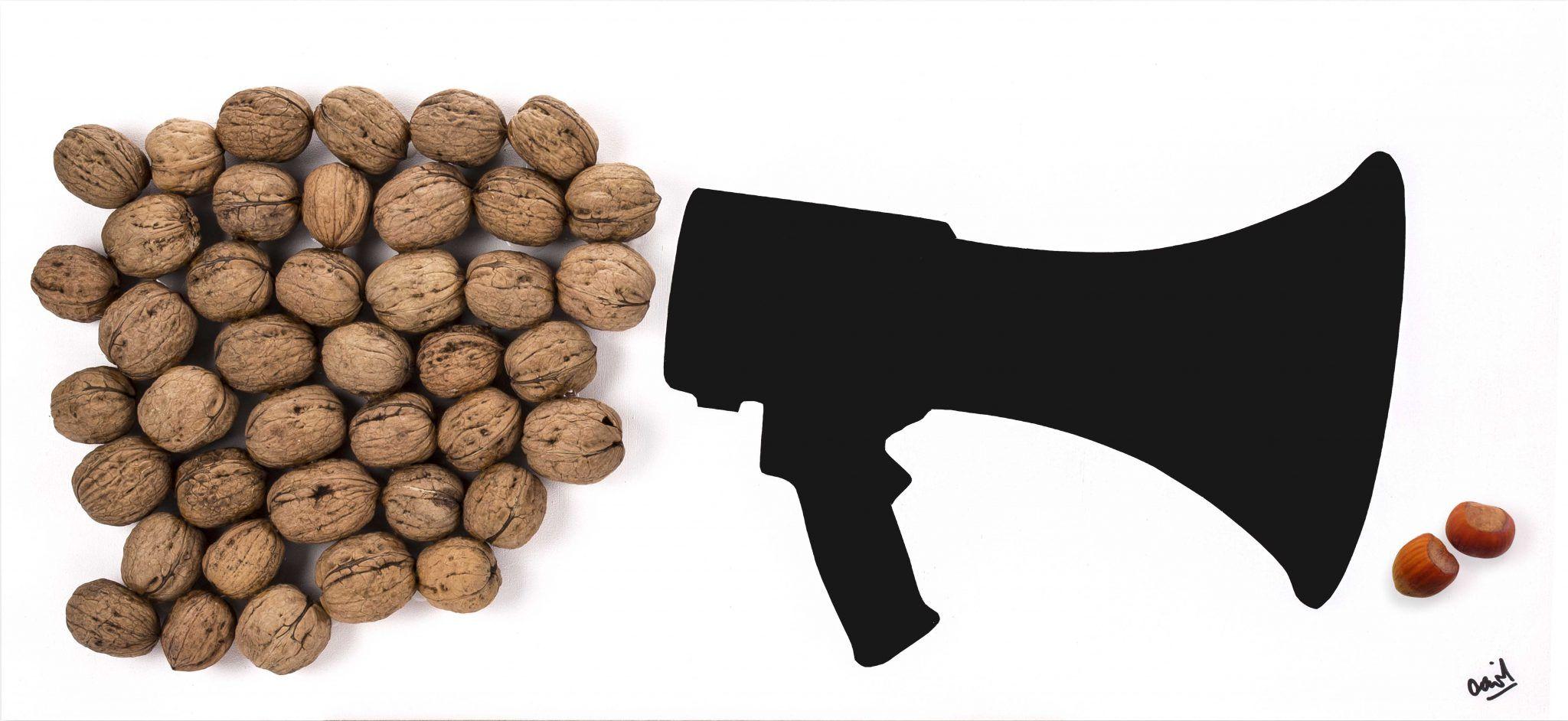 Muchas nueces y poco ruido, poema visual de David Pérez Pol