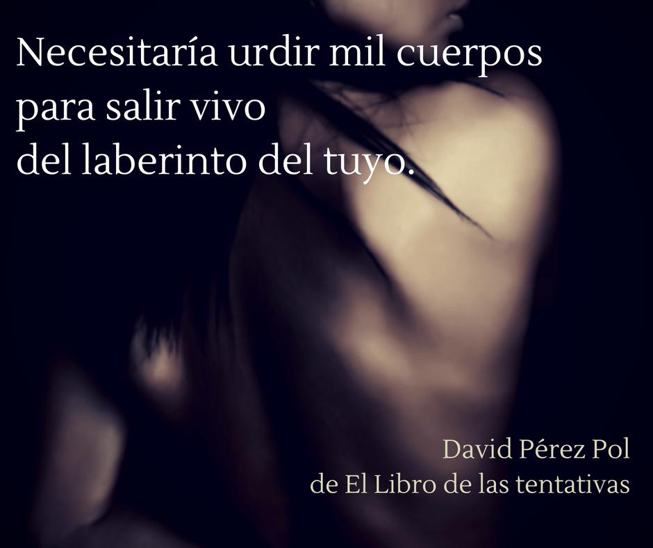 Necesitaría urdir mil cuerpos de David Pérez Pol