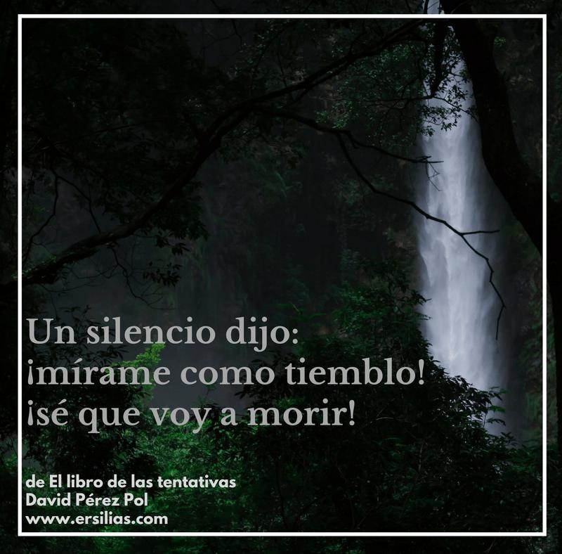 Un silencio dijo de David Pérez Pol