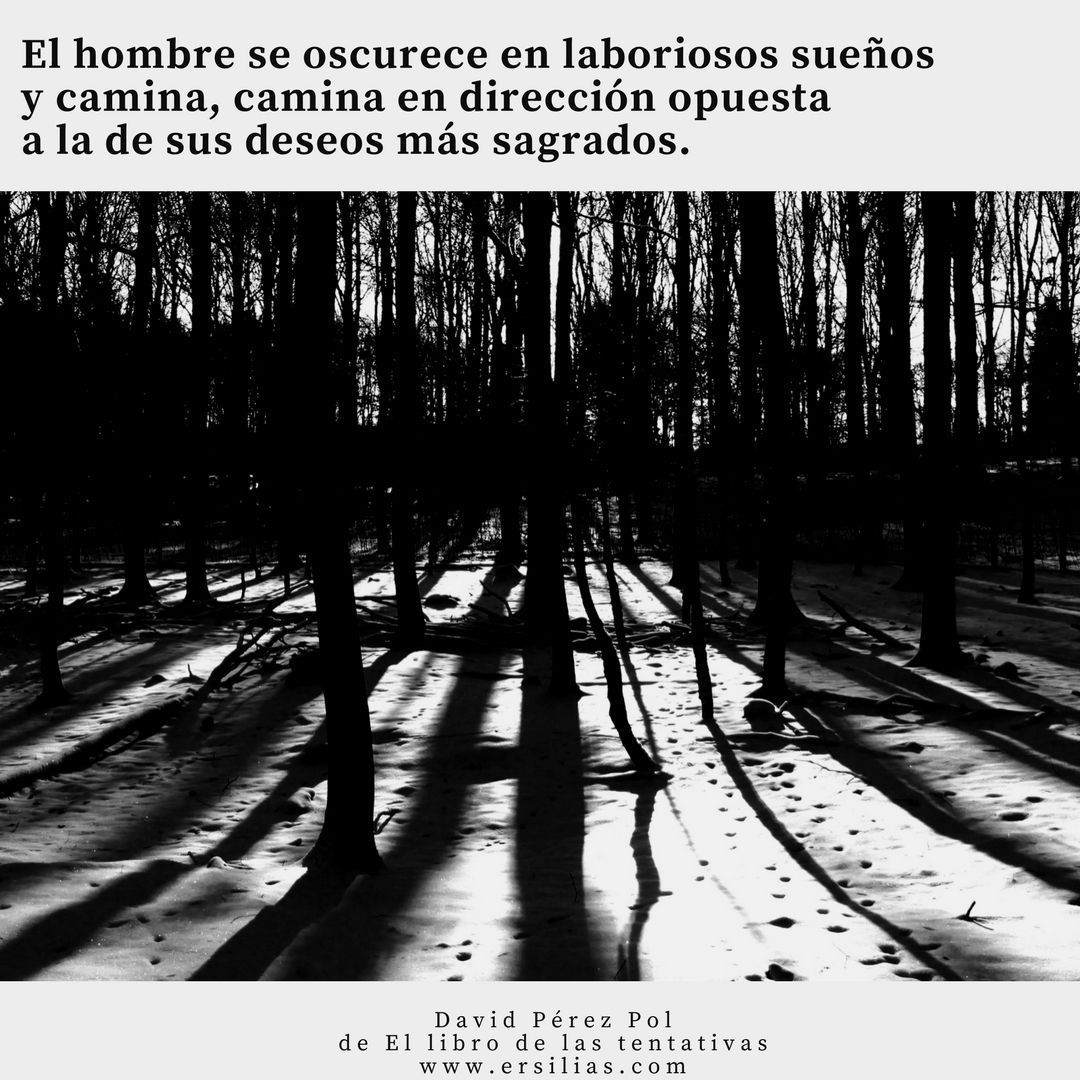 Poema nº 20 de David Pérez Pol