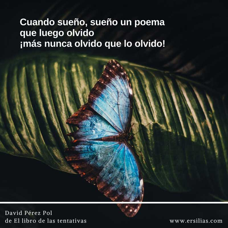 Cuando sueño sueño un poema Poema nº 23 de David Pérez Pol de El libro de las tentativas