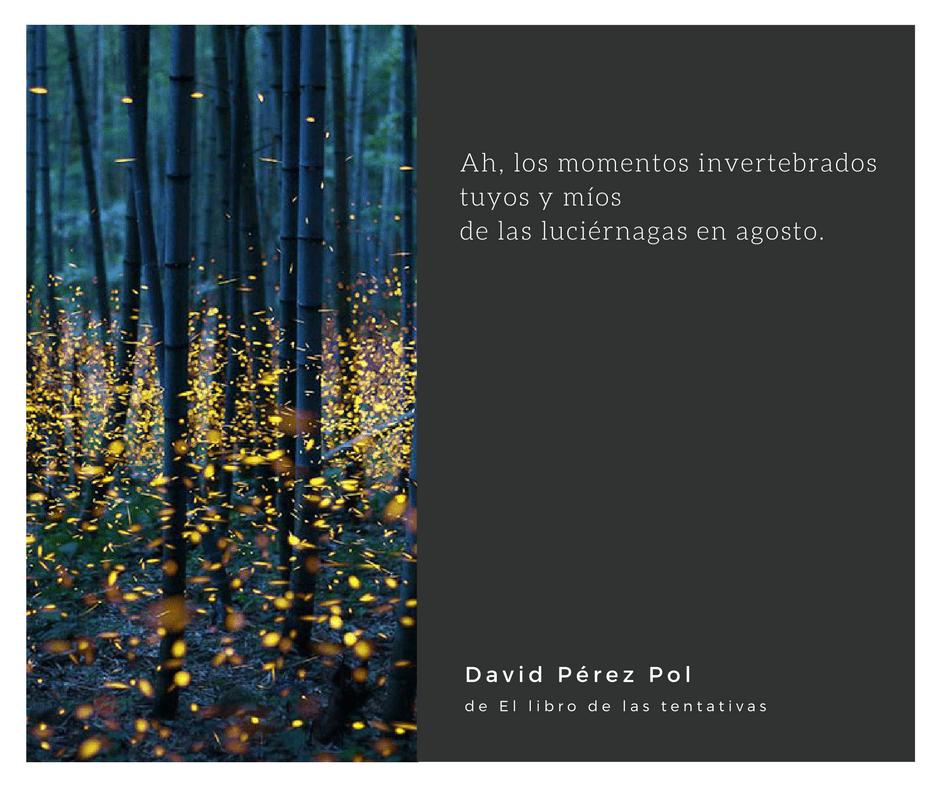 Los momentos invertebrados de David Pérez Pol