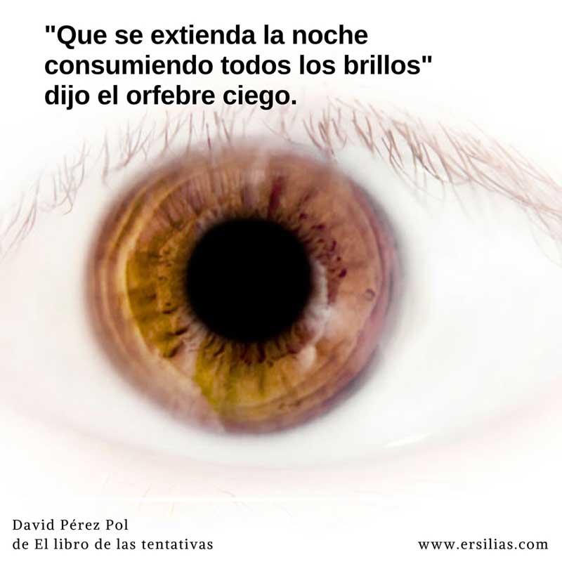 Que se extienda la noche Poema nº 31 de David Pérez Pol de El libro de las tentativas