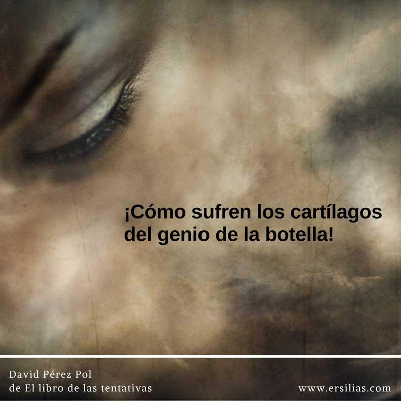 Cómo sufren los cartílagos Poema nº 36 de David Pérez Pol de El libro de las tentativas