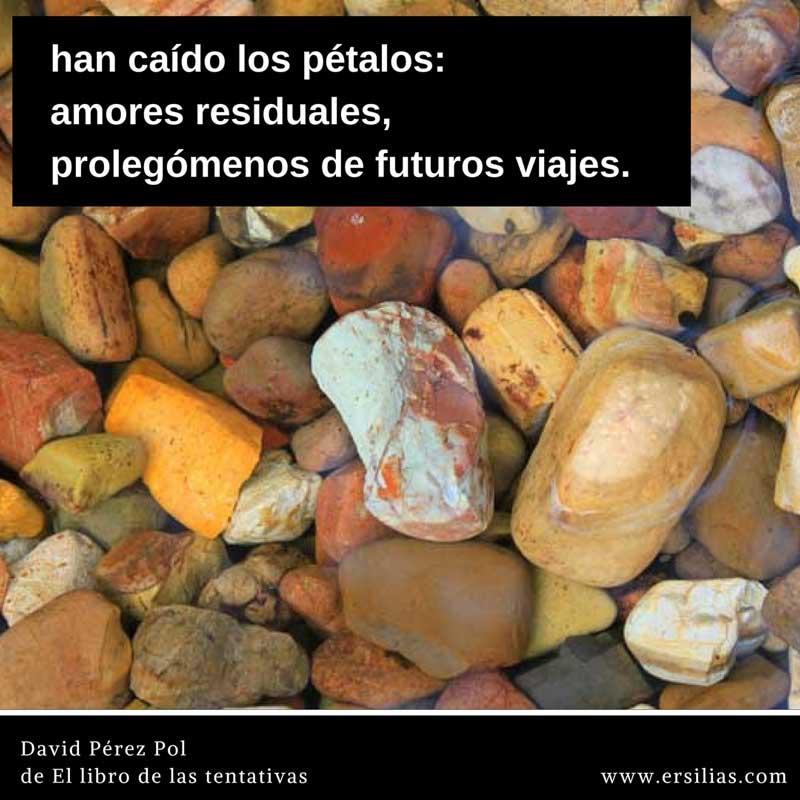 han caído los pétalos Poema nº 39 de David Pérez Pol de El libro de las tentativas