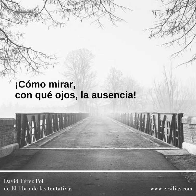 Cómo mirar Poema nº 40 de David Pérez Pol de El libro de las tentativas