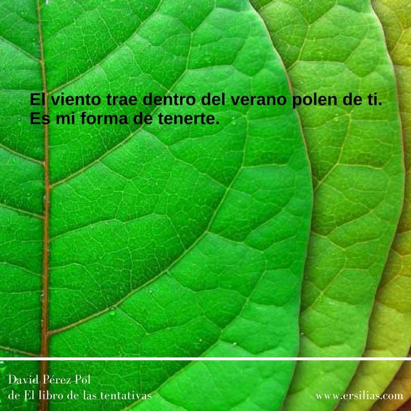 El viento trae Poema nº 51 de David Pérez Pol de El libro de las tentativas