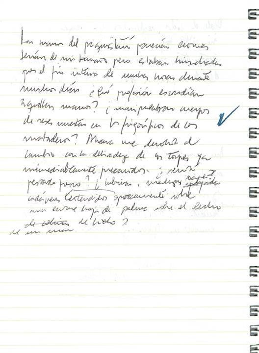 Texto manuscrito nº 19