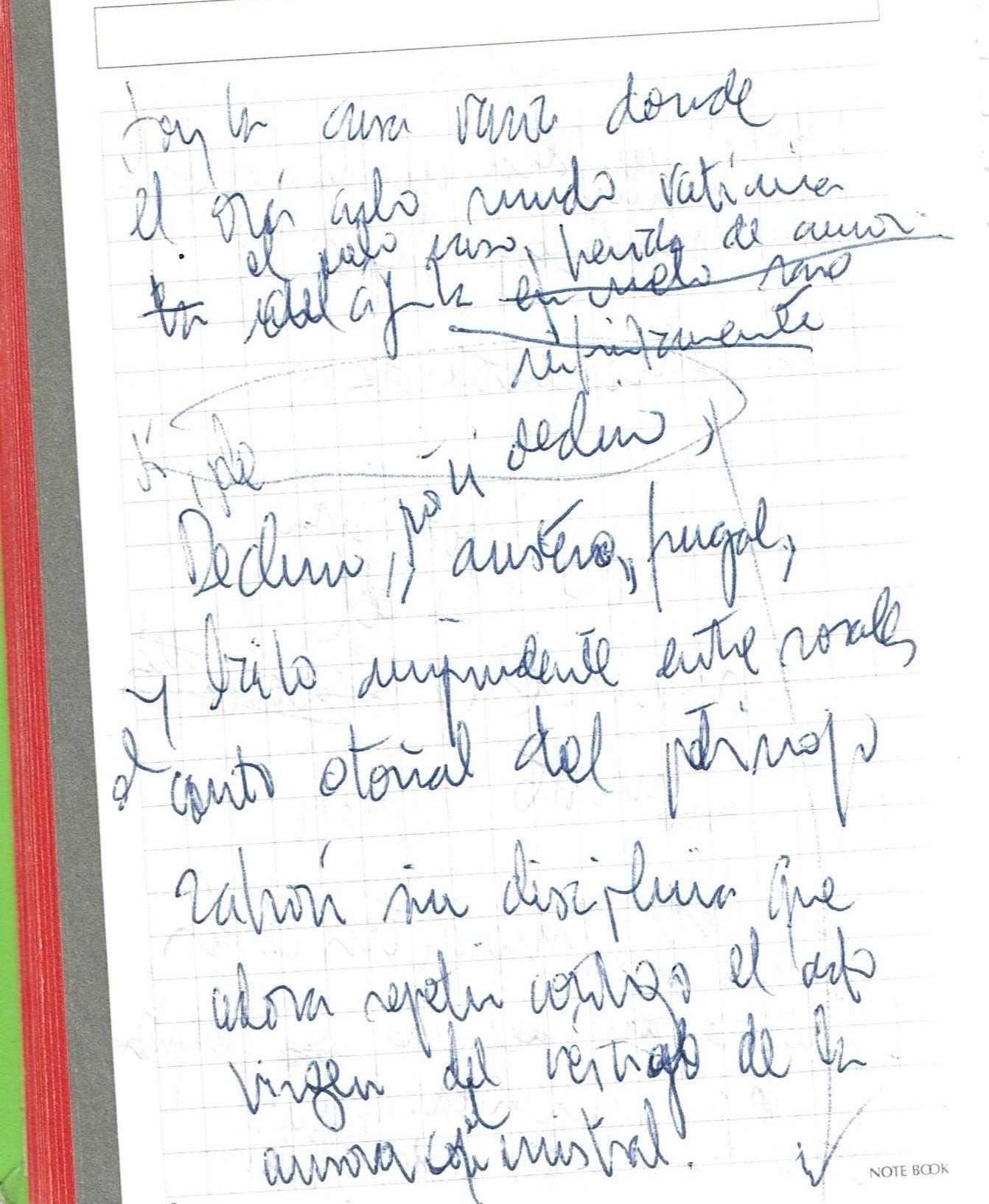 Soy la casa vacía donde Texto manuscrito nº 28