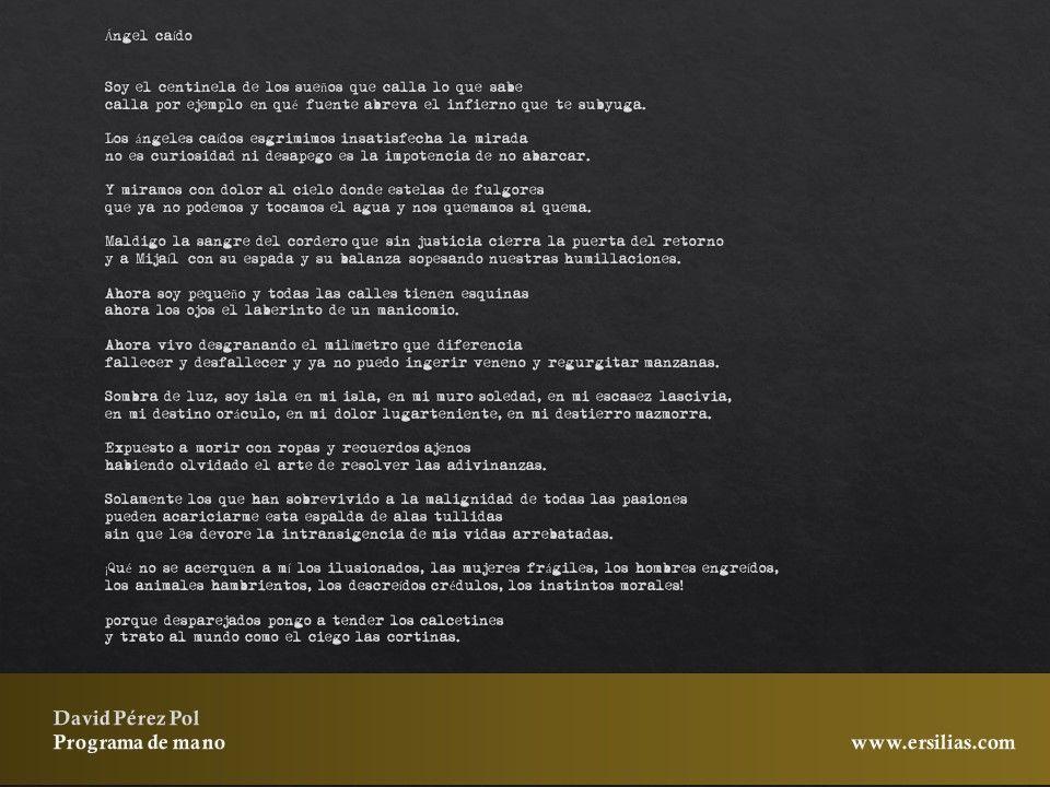 Ángel caído de Programa de mano de David Pérez Pol