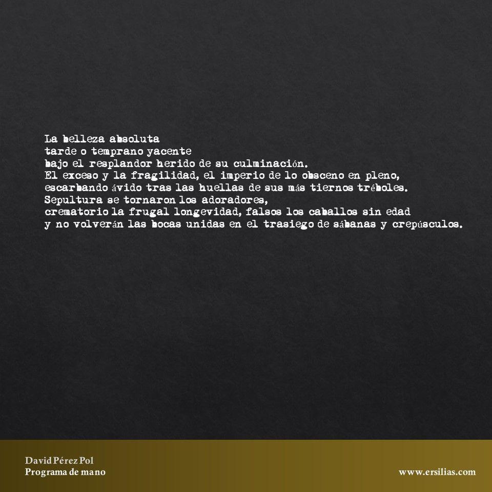 La belleza absoluta de Programa de mano de David Pérez Pol
