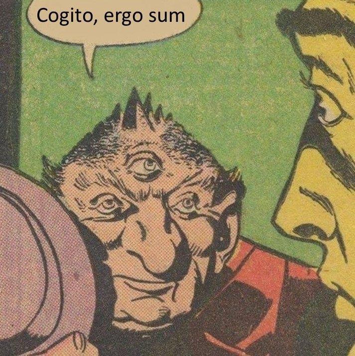 Cogito ergo sum Viñeta filosófica nº 6