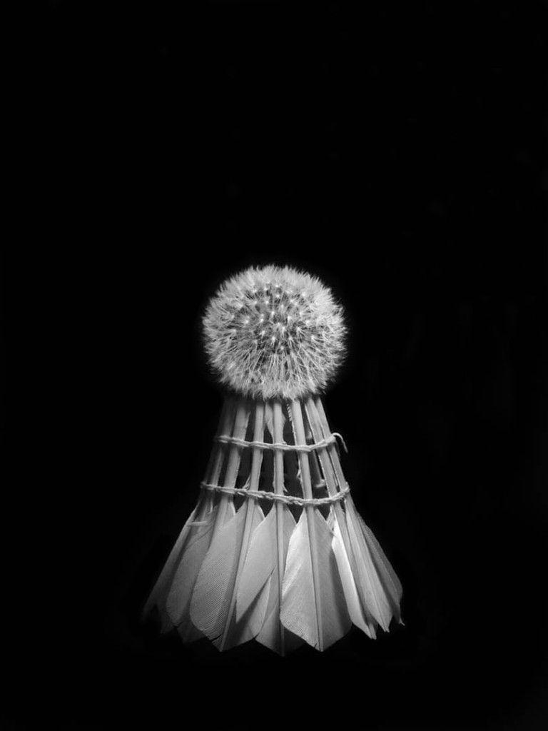 Poesía Visual de Jordi Alcaraz