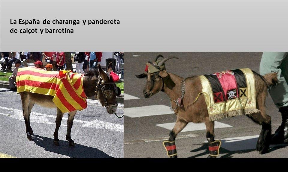 Burro y cabra - La España de charanga y pandereta nº 2