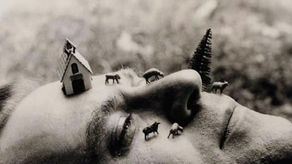 Luis Camnitzer, poeta visual