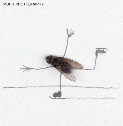 Magnus Muhr, poeta visual
