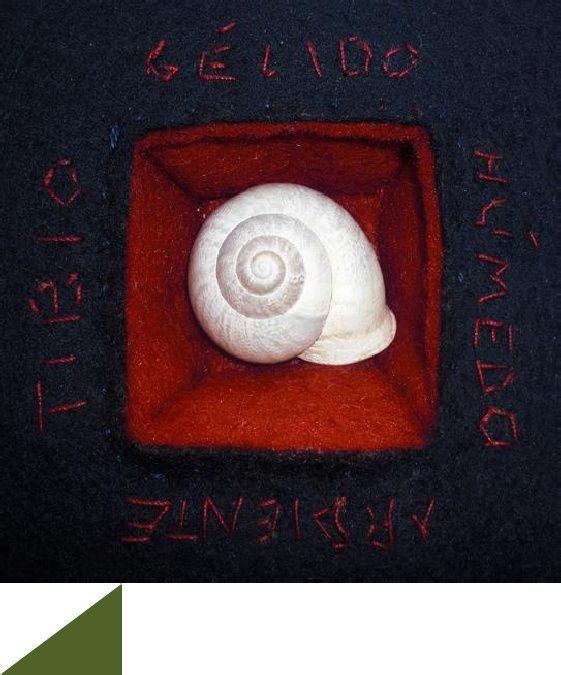 Mar Lozano, poeta visual