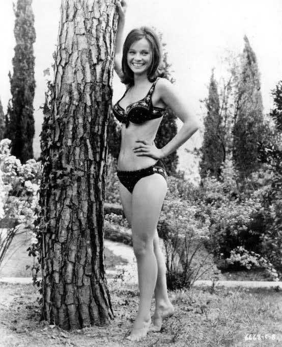 Laura Antonelli, Pola, 1941–2015